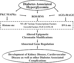 the role of epigenetics in the pathology of diabetic complications