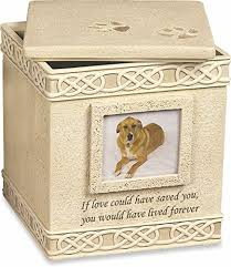 urns for dogs pet urns caring for a senior dog