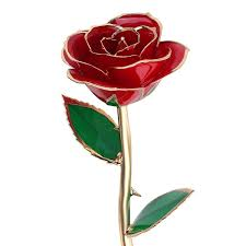 Valentine Day Gifts For Wife Valentines Day Gifts For Her Qgstar 24k Gold Dipped Real Rose