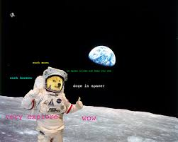 Meme Space - doge in space doge know your meme