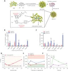 nanotechnology based combination therapy for overcoming multidrug
