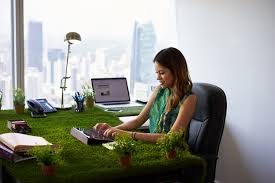 plants for office download plants on office desk stock photo