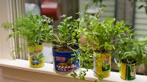 Window Sill Garden Inspiration 10 Herb Garden Planter Ideas