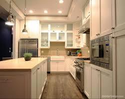 Kitchen Design Chicago Chicago Kitchen Design Chicago Kitchen Design And Kitchen Designs