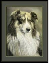 australian shepherd ebay vintage english print labrador retriever dog and siamese cat art