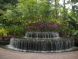 Botanical Gardens In Singapore by Orchids In Singapore Love Lee