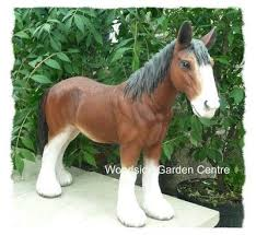 19 best clysdale horses images on clydesdale horses