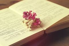 Drying Flowers In Books - dry rose blue book white background stock photos images