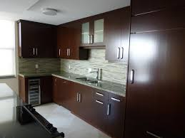 Custom Kitchen  Dark Brown Kitchen Cabinet Refinishing - Single kitchen cabinet