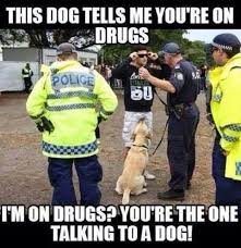Funny Police Memes - 40 very funny cops meme pictures and photos
