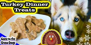 thanksgiving dinner for dogs diy treats to the snow