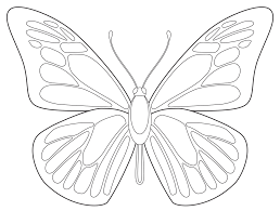 how to draw a butterfly how to draw a butterfly