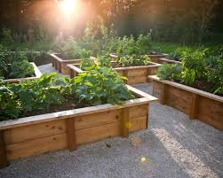 Backyard Planter Box Ideas Best 25 Raised Planter Boxes Ideas On Pinterest Garden Planter