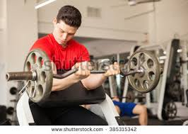 Bench Bicep Curls Preacher Curl Stock Images Royalty Free Images U0026 Vectors