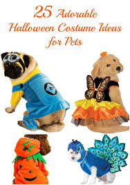 Halloween Costume Ideas For Pets 25 Adorable Halloween Costume Ideas For Pets Geminired Creations