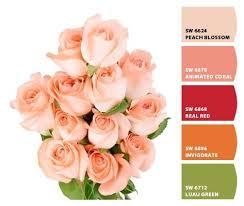 89 best kid u0027s room images on pinterest paint colors project