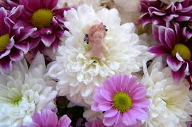 baby flowers baby fairy in flowers angeliqueminiatures