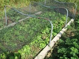 best 25 greenhouse shade cloth ideas on pinterest pvc