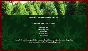 frosty u0027s christmas tree farm