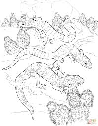 gecko colouring pages gecko coloring pages click to see printable
