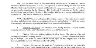 llc operating agreement template vnzgames in free llc operating