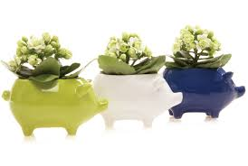 unique animal pots outdoor animal planters chive chive