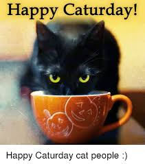 Caturday Meme - happy caturday happy caturday cat people caturday meme on sizzle