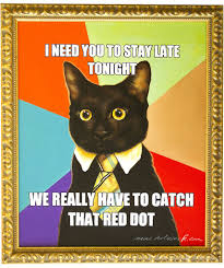 Buisness Cat Meme - meme artwork business cat wants to catch the red dot