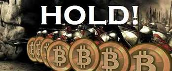 Bitcoin Meme - hodl how a 4 letter meme became bitcoin s key valuation metric