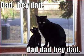Funny Fathers Day Memes - father s day 2017 best funny memes heavy com