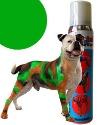 pet paint dog animal safe temporary hairspray hair color spray can