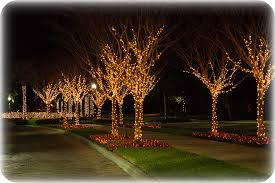 miller lights inc commercial decorating tree lighting