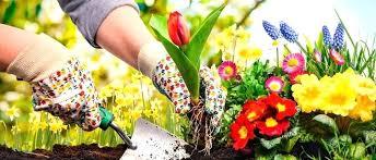 Gardening Zones - gardening leave redundancy gardening zones oregon what is the