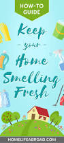 Home Fresh by 5 Tips To Keep Your Home Smelling Fresh Home Life Abroad