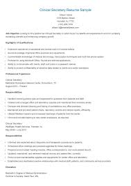 Example Secretary Resume Secretary Resume Examples