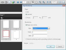 pdf17 consistent numbering pdf documents