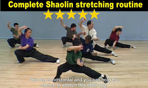 shaolin kung fu android apps google play