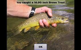 fly fishing simulator android apps on google play
