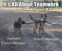 Teamwork Memes - it s all about teamwork 20 pictures worldwideinterweb