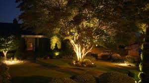 Lighting In Landscape Landscape Lighting Britescape Expert Landscape Lighting In Greater