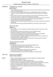 exle resume for retail retail planner resume sles velvet