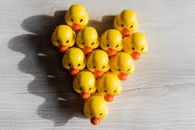scaling your redux app with ducks u2013 freecodecamp