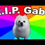 Doge Dog Meme - the doge meme explained dog memes