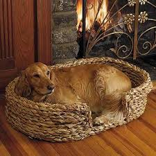 Shabby Chic Dog Beds by An Old Braided Dog Bed Adds A Touch Of Shabby Chic Elegance