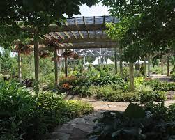 semi shady corner garden ideas photograph file name shade