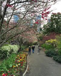 Botanical Garden Sydney by Spring Walk At The Botanical Gardens In Sydney Picture Of Royal