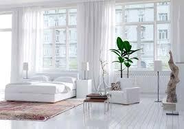White Bedroom Plants Instagram Worthy Living Space Design Trends Best Pick Reports