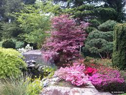 Gartengestaltung Mit Steinen Und Grsern Modern Pflanzen Im Garten Rheingrün