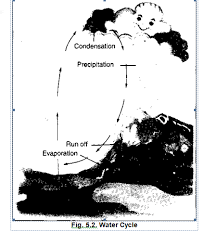 ncert solutions for class 7 geography social science chapter 5 water