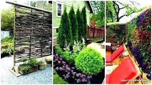 Privacy Garden Ideas Privacy Screen Garden Ideas Best Garden Screening For Privacy